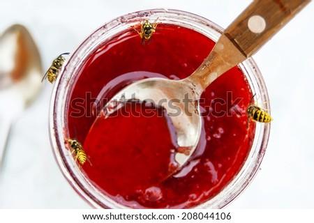 Macro shot of wasps around a glass jar full of jam, concept of temptation, honeypot - stock photo