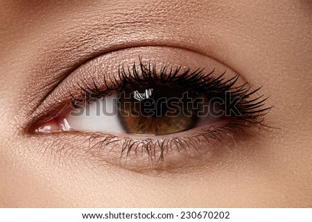 Macro shot of woman's beautiful eye with eyelashes. Sexy view, sensual look. Natural makeup - stock photo