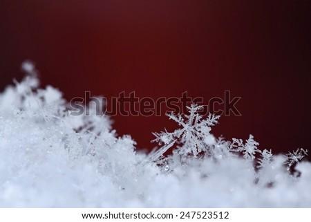 Macro shot snowflakes - stock photo
