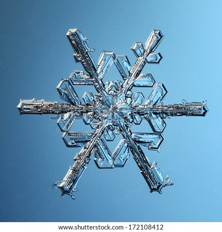 macro snowflake ice crystals present natural - stock photo