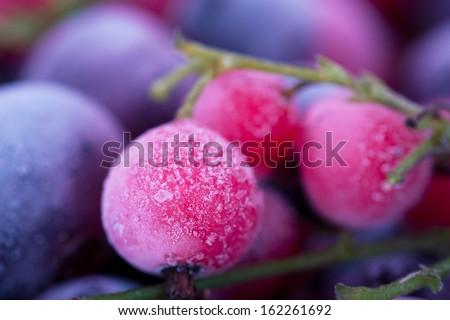 Macro view of frozen berries: blackcurrant, redcurrant, blueberry - stock photo