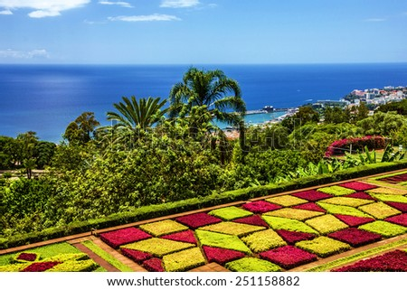 Madeira island: botanical garden Monte, Funchal, Portugal - stock photo