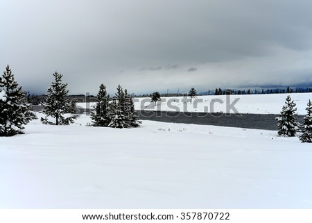Madison River and Douglas Fir covered with snow in Yellowstone National Park - stock photo