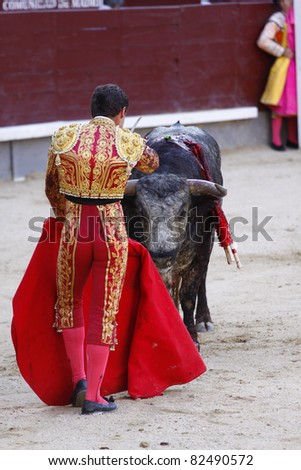 """MADRID - JUNE 25: """"Corrida"""" , Spanish tradition and art where atorero fights a bull. It has been prohibited in Catalunia since 2011 for animal torture. June 25, 2011 in Madrid (Spain) - stock photo"""