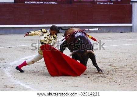 MADRID - JUNE 25: Novilladas in Las Ventas. Novillero: Jesus Fernandez. Bulfighting has been prohibited in Catalunia since 2011 for animal torturing. June 25, 2011 in Madrid (Spain) - stock photo