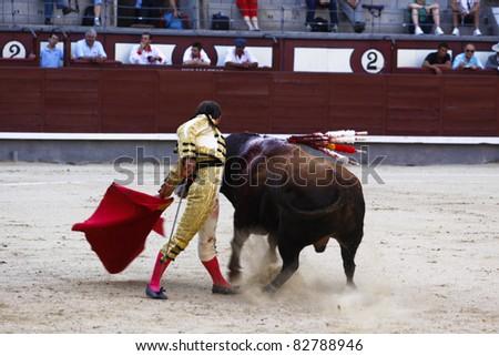 MADRID - JUNE 25: Novilladas in Las Ventas. Novillero: Jesus Fernandez. Bullfighting has been prohibited in Catalunia since 2011 for animal torturing. June 25, 2011 in Madrid (Spain) - stock photo