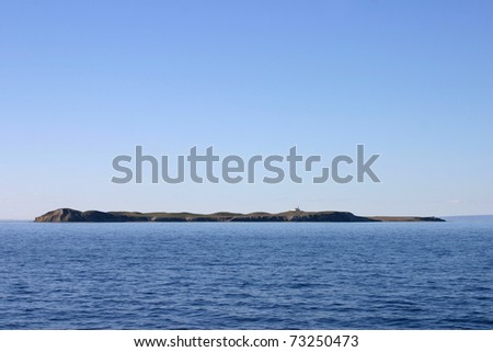 magdalena island in the straits of Magellan