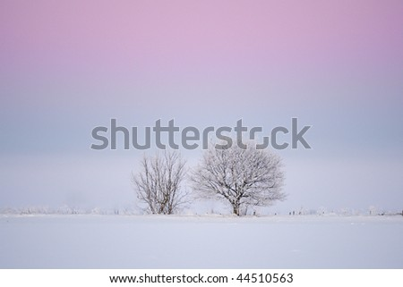 Magenta light - stock photo