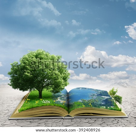 magic book - stock photo