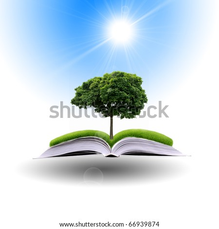 magic book   with the lines and lights with green tree