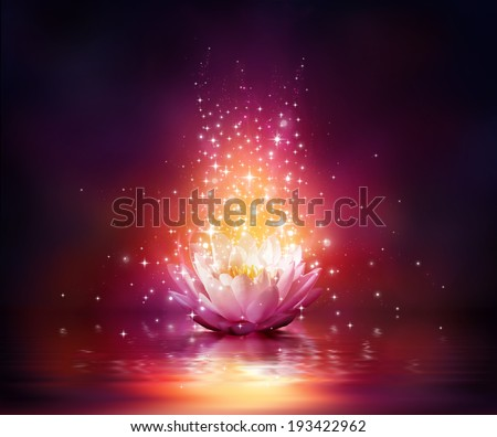 magic flower on water - stock photo