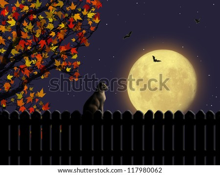 Magic night landscape with moon and a cat