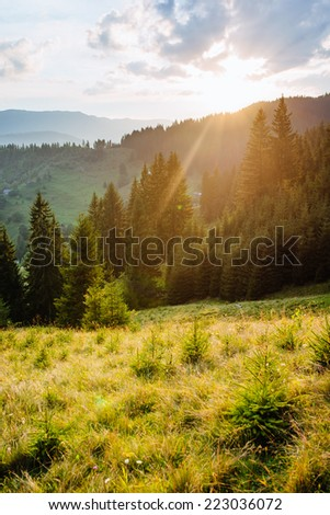 Magic sunset in the mountains. Carpathian, Ukraine, Europe.