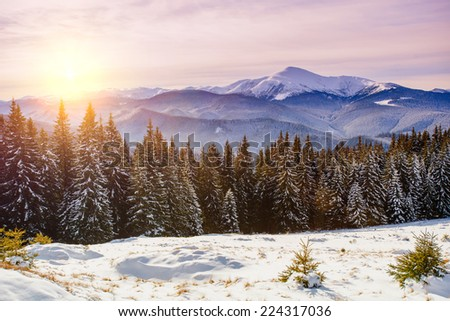 Magic sunset in the snowy mountains - stock photo