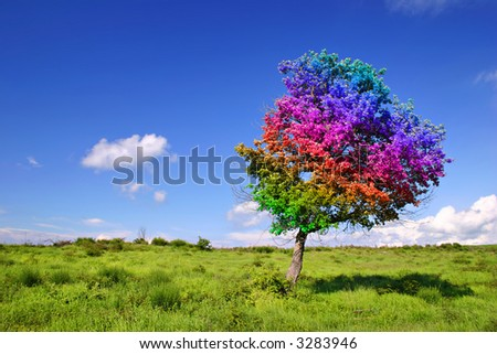 Magic Tree on grass land - stock photo
