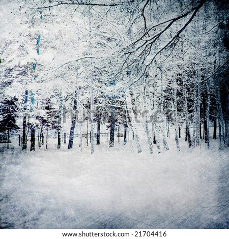 magic winter background with forest