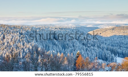Magical Winter Landscape in the Black Forest, Germany - stock photo