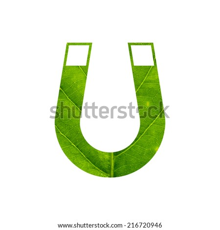 Magnet icon made of green leaf isolated on white background - stock photo