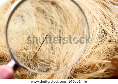 Magnification glass, needle and haystack composition - stock photo