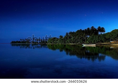 magnificent blue night sky over palm trees in Maldives - stock photo