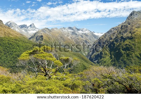 magnificent fabulous scenery in New Zealand - stock photo