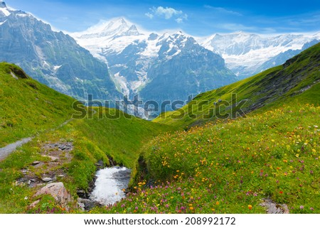 Magnificent panorama of the Alps, mountain peaks in snow. Rapid stream flows between meadows with wildflowers. Bright summer day. Deep blue sky