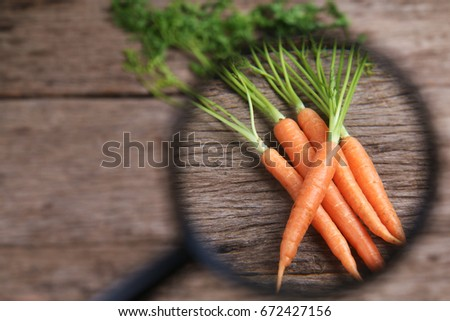 Magnifying glass focusing on carrots. Concept of chemical or pesticide investigation on food