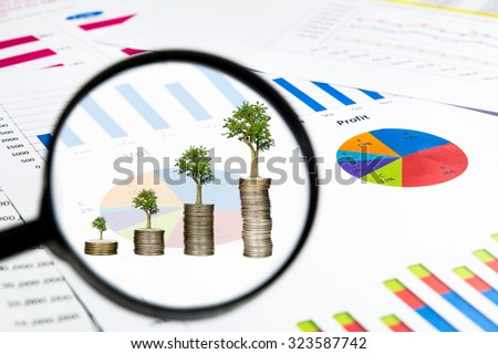 magnifying glass see trees growing on coins with financial chart documents, investment concept - stock photo