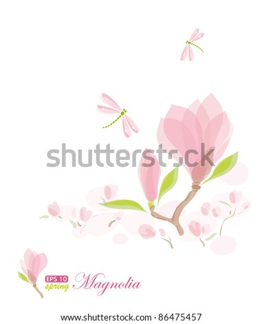 Magnolia branch and dragonfly, nature background, Illustration raster - stock photo