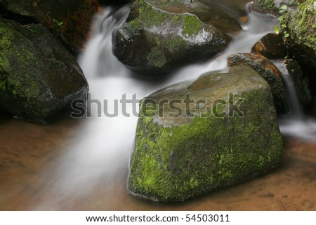 Magoebaskloof flowing water study: Moss, Rocks, and Water in Limpopo, South Africa - stock photo