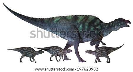 Maiasaura Dinosaur with Babies - Maiasaura is a large duck-billed dinosaur that lived in North America in the Cretaceous Era shown here with several hatchlings.