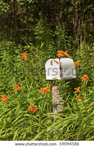 Mailbox surrounded by overgrown orange lillies - stock photo