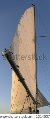 mainsail in sunset