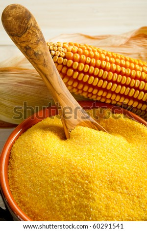 maize  flour close up - stock photo