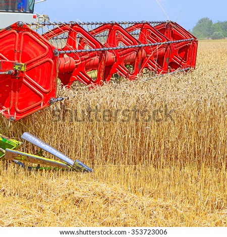 Maize grain harvester - stock photo