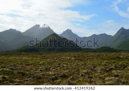 majestic bog landscape with light foggy mountain in background in summer