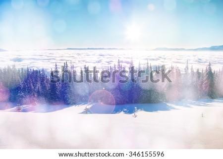 Majestic foggy landscape glowing by sunlight in the morning. Dramatic wintry scene. Location Carpathian, Ukraine, Europe. Beauty world. Bokeh light effect, soft filter. Instagram toning effect. - stock photo