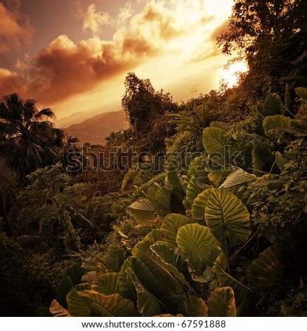Majestic landscape - stock photo