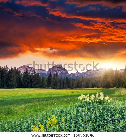 Majestic morning mountain landscape in the national park Durmitor in Montenegro. Dramatic overcast sky. Balkans, Europe. Beauty world. - stock photo