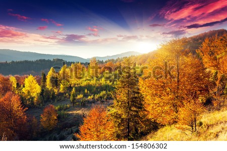 Majestic morning mountain landscape with colorful forest. Dramatic overcast sky. Carpathian, Ukraine, Europe. Beauty world.