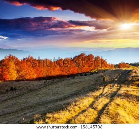 Majestic morning mountain landscape with colorful forest. Dramatic overcast sky. Carpathian, Ukraine, Europe. Beauty world. - stock photo