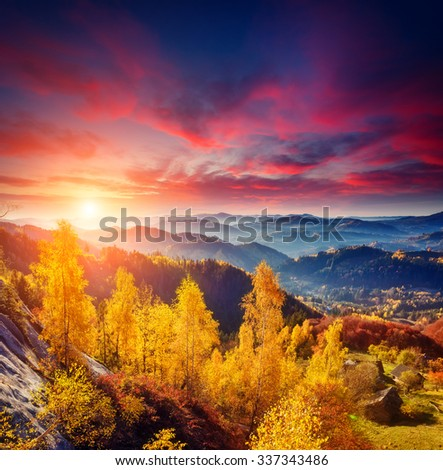 Majestic trees with sunny beams at mountain valley. Dramatic and picturesque morning scene. Red and yellow leaves. Warm toning effect. Carpathians, Sokilsky ridge. Ukraine, Europe. Beauty world.