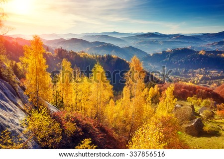 Majestic trees with sunny beams at mountain valley. Dramatic and picturesque morning scene. Red and yellow leaves. Warm toning effect. Carpathians, Sokilsky ridge. Ukraine, Europe. Beauty world. - stock photo