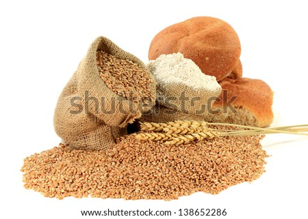 Major Ingredients for manufacturing bread ? Raw Wheat Kernel spilled and in Burlap Bag, Wheat Flour in Burlap Bag and Wheatear over Kernels in front of Pile Whole Whit Buns isolated over white.