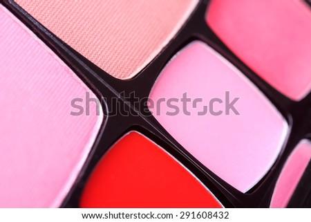 Make-up blush palette, closeup  - stock photo