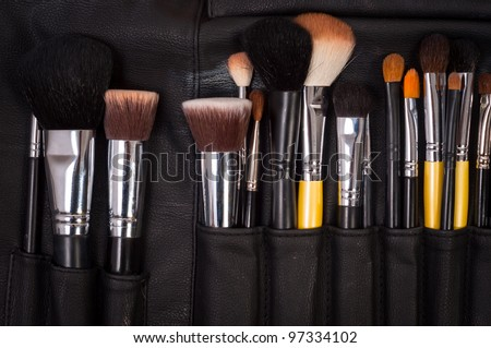 Makeup brushes in leather case - stock photo