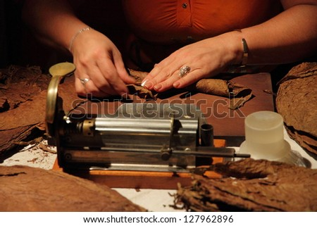 Making of a cuban cigar by hand - stock photo