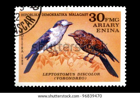 "MALAGASY REPUBLIC - CIRCA 1982: A stamp printed in Malagasy Republic (Madagascar) shows image of Cuckoo Roller with the inscription ""Leptostomus discolor (vorondreo)"", from series ""Birds"", circa 1982"