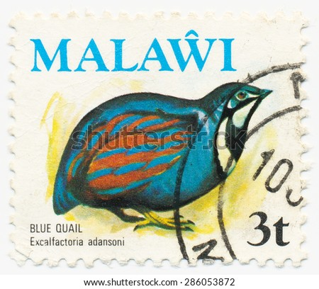 MALAWI - CIRCA 1974: A stamp printed in Malawi shows Blue Quail, Excalfactoria adansoni, circa 1974 - stock photo