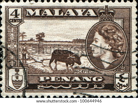MALAYA - CIRCA 1946: A stamp printed in Peneng, Malaya shows rice field inset portrait of Queen Elizabeth II, series, circa 1946 - stock photo